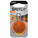 Spot Lit Orange - White LED
